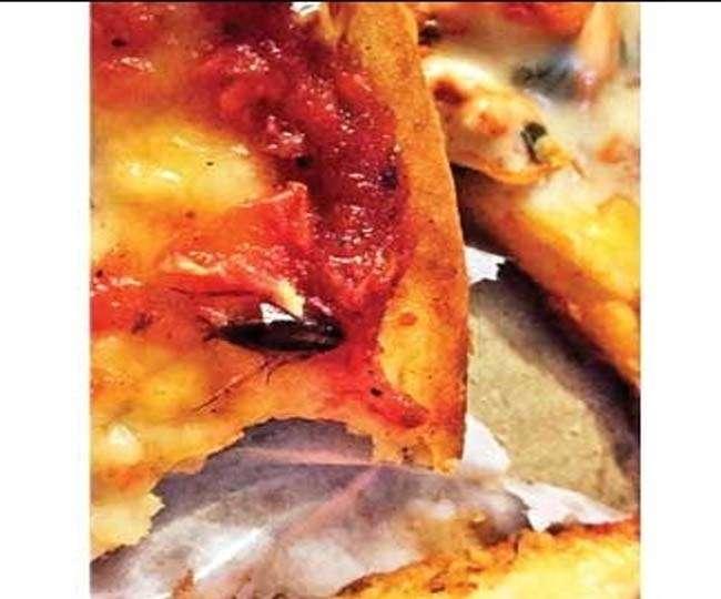 पिज्जा में मिला आधा पका कॉकरोच, आउटलेट ने मांगी मांफी