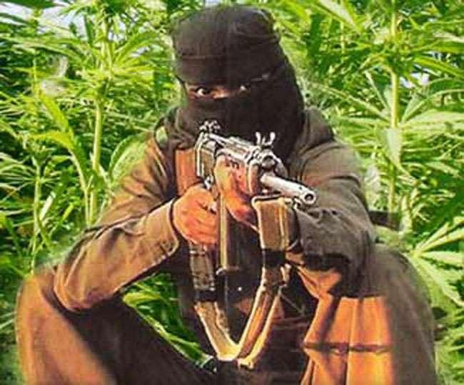 माओवादी बंदूक नहीं, बैलेट से करें मुकाबला: वेंकैया नायडू