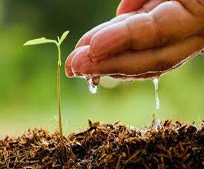 बदली जा रही कृषि वैज्ञानिकों की चयन प्रक्रिया,चयन प्रक्रिया में होगा भारी परिवर्तन