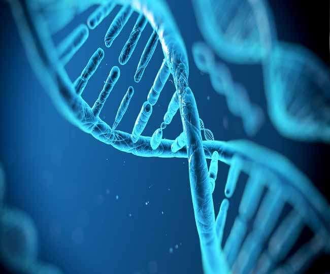 डीएनए प्रोफाइल विधेयक को लेकर चल रही प्रक्रिया : केंद्र