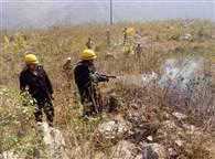 PICS: उत्तराखंड में जंगल की आग रोकने को की गई मॉक ड्रिल