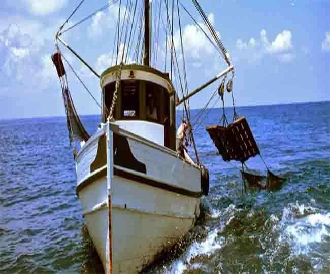 मछली खाने के शौकीनों के लिए गोवा से आई ये अच्छी खबर