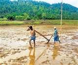 किसान गेंदू की कहानी सुनकर आपको फिल्म 'मदर इंडिया' की याद आ जाएगी