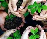 हरियाली अमावस्या 23 को, इनमें से करें एक उपाय मिलेगा मनचाहा फल