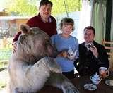 अजब-गजब शौक! ये कपल भालू के साथ घर में पीता है चाय तो यह महिला मगरमच्छ के साथ शेयर करती है घर
