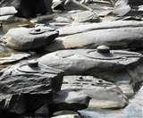 कर्नाटक की इस नदी में स्थापित हैं हजारो शिवलिंग