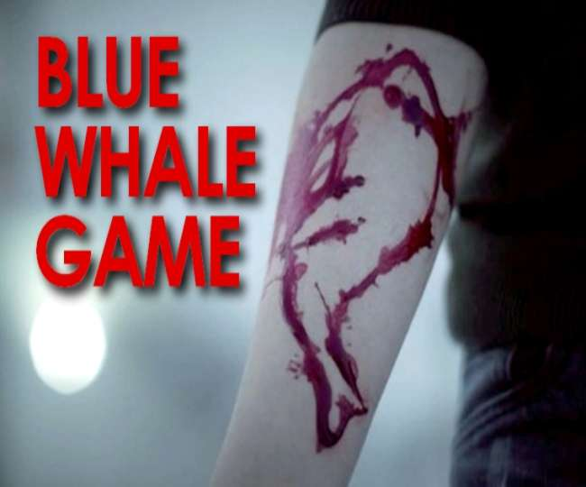Blue whale task sent to a student in Lucknow via whatsapp 16764950