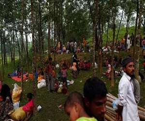 म्यांमार में 28 हिंदुओं की सामूहिक कब्र मिली, मुस्लिम रोहिंग्या आतंकी जिम्मेदार