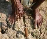 मप्र में चार और किसान ने की आत्महत्या