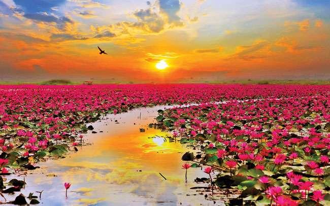 अपने दुखों का कारण समझने में सक्षम हो जाएं तो जीवन बने सहज और सुंदर