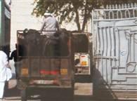 देखें तस्वीरें : मेरठ में पुलिस के संरक्षण में चल रहे अवैध स्लाटर हाउस