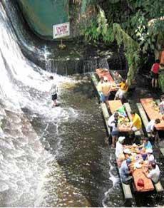 तस्वीरें : झरने में अनोखा रेस्तरां है या रेस्तरां में झरना, लेकिन यहां पर्यटक लुत्फ उठाते हैं