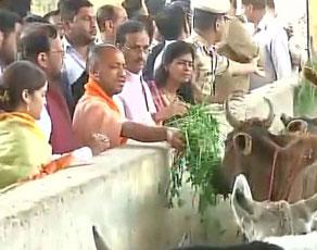 देखें तस्वीरें: लखनऊ में कान्हा उपवन में पहुंचे मुख्यमंत्री योगी आदित्यनाथ