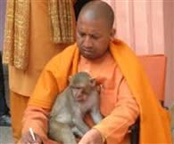 तस्वीरों में देखें-गोरक्षपीठ से यूपी के सिंहासन तक योगी