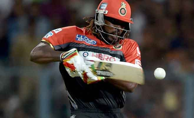 chris gayle,chris gayle first batsman,chris gayle score 10000,chris gayle runs in t 20,chris gayle t 20,gayle score 10000 runs,royal challengers bangalore,royal challengers bangalore gayle,brendon mccullum,brad hodge,