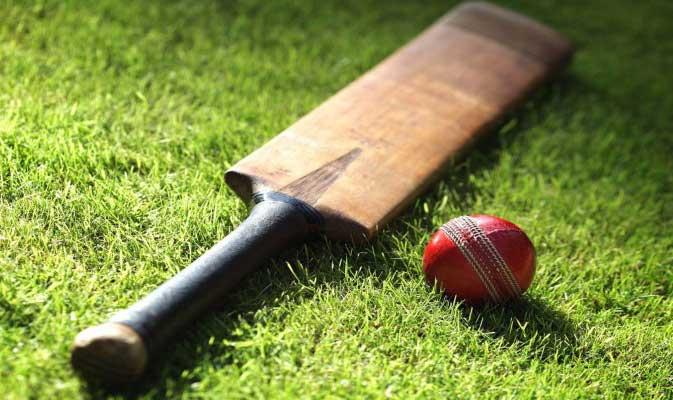 क्रिकेट के मैदान पर हुई लड़ाई, देख भाई