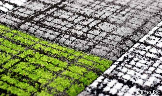 छा गया इको फ्रेंडली कालीन, जो पानी की बर्बादी रोकने में है लाजवाब