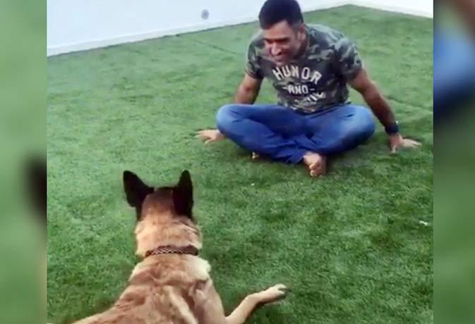 मिलिए क्रिकेटरों के पालतू जानवरों से, धोनी के पास कुत्ता तो जडेजा को घोड़ों से प्यार