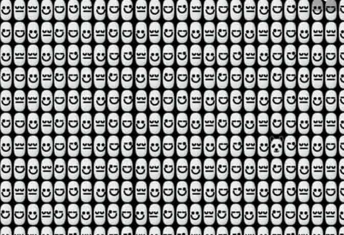 क्या आप बता सकते हैं इस भीड़ में कहां छुपा है एक पांडा