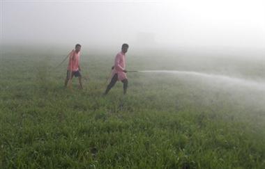 Image result for punjab khet spray