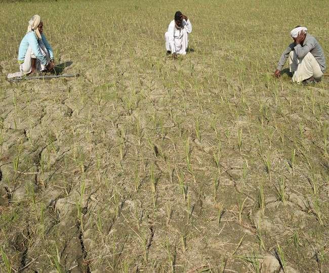 किसानों को तोहफाः उप्र सहकारी ग्राम विकास बैंक की एकमुश्त समाधान योजना