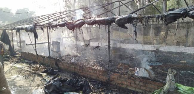Loss of three lakhs due to fire in poultry farm