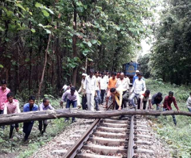 Image result for trees fallen on railway tracks