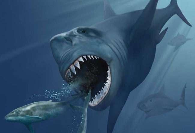 The Meg Trailer, 75 फुट की शार्क का ख़तरनाक खेल, रोंगटे खड़े करने वाले नज़ारे