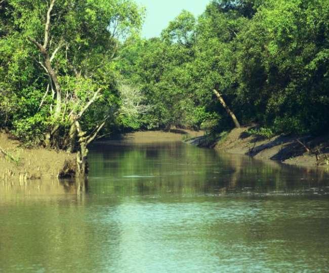 फनी की ऊंची लहरों से तबाह हुआ ओडिशा का खूबसूरत और पॉप्युलर ईको-पर्यटन स्थल