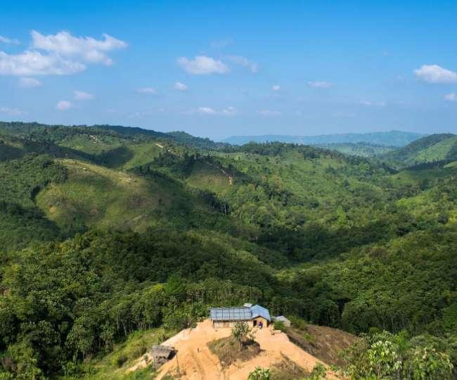 गुवाहाटी की नोकरेक नेशनल पार्क आकर देखें दुर्लभ पेड़-पौधे और जानवरों का समूह