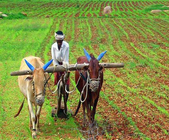 Image result for पीएम-किसान के सभी लाभार्थी