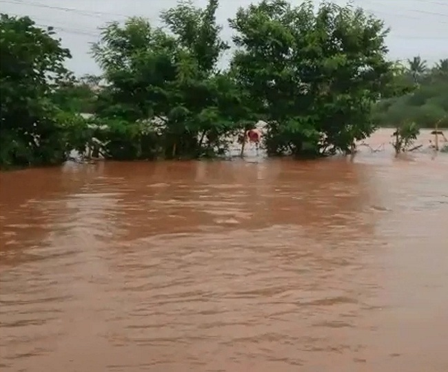 60-year-old Karnataka man jumps into flooded river, comes out alive two days later