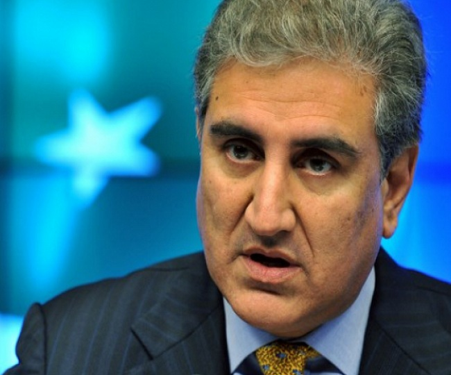 'Don't live in fool's paradise, UNSC not waiting with garlands': FM Qureshi's 'advice' to Pak on Kashmir issue