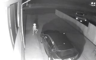Elf-like creature appears on spooky CCTV footage, netizens call it 'Harry..