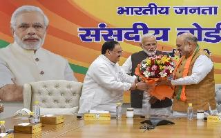 J P Nadda appointed BJP working president, Amit Shah to remain party chief