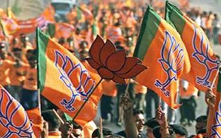 2019 Lok Sabha Election Results: BJP wins absolute majority, declares EC