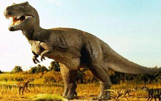 Dinosaurs were flapping wings even before they could fly, says a new..
