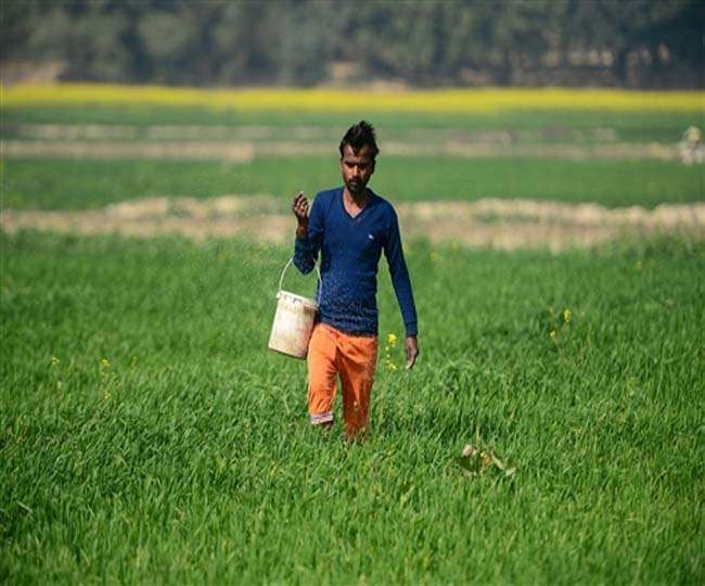 Union Budget 2020: Sitharaman unveils 16-point action plan to revive agricultural sector | All you need to know