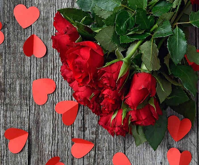Happy Rose Day 2020: Wishes, quotes, WhatsApp messages and SMS to share with your loved ones on this day