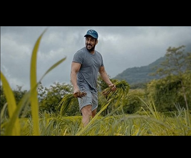 Watch: Salman Khan shares another 'farming' video from paddy fields