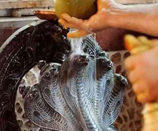 Happy Nag Panchami 2020: Wishes, messages, quotes, SMS, WhatsApp and Facebook status to share on 'Nagul Chavithi'