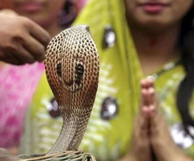 Nag Panchami 2020: Here's why this temple in Ujjain opens only once a year; all you need to Know