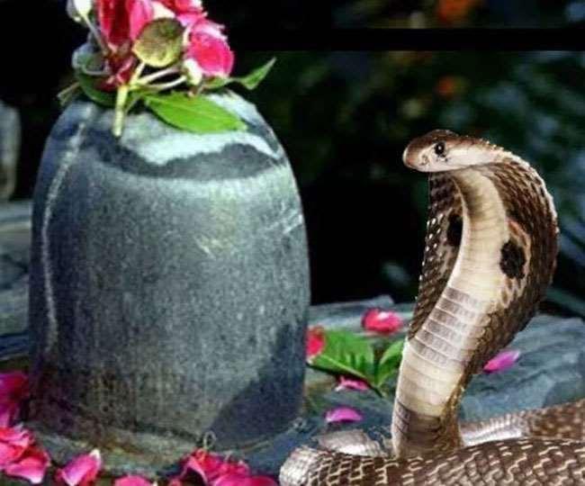 Nag Panchami 2020 Date and Shubh Muhurat: Check date, time, shubh muhurat and tithi of 'Nag Chaturthi' here