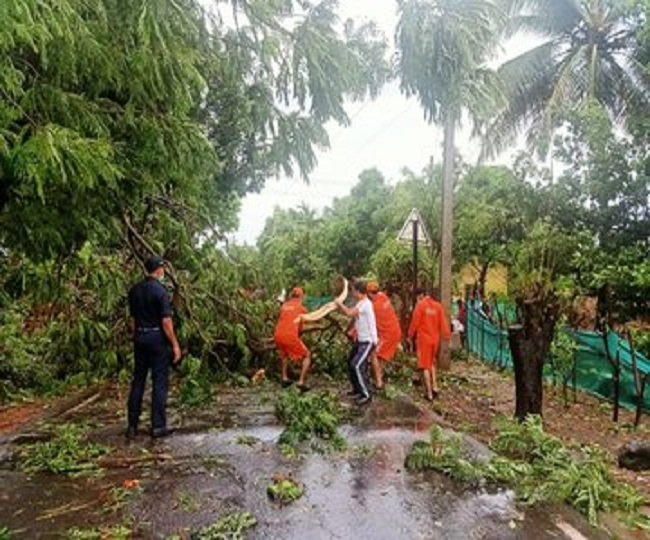 Cyclone Nisarga: 1 killed in Raigad after electric pole falls on him; Cyclonic storm set to weaken further in next 3 hrs   Highlights
