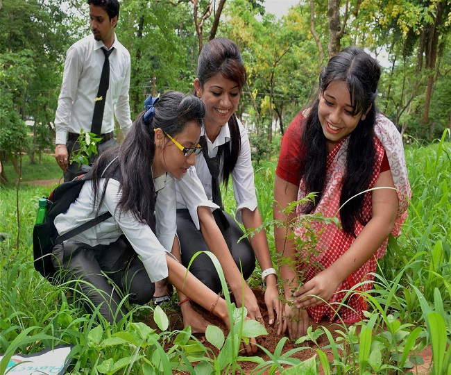 World Environment Day 2020   History, Significance and Importance of 'Environment Day'