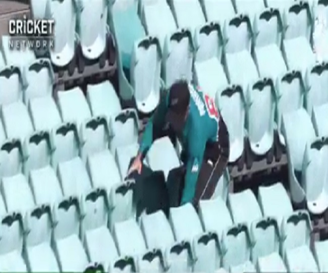'Realising value of spectators': Players fetch ball from empty stands during Aus vs NZ ODI amid coronavirus scare | Watch