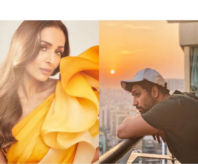 Coronavirus Outbreak: From Vicky Kaushal to Malaika Arora, how B-Town stars are spending their time amid lockdown | In Pics