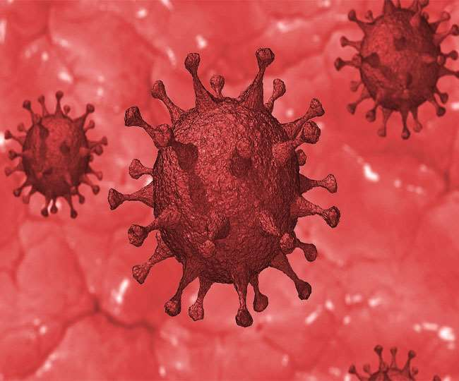 'Israel develops antibody against COVID-19, can neutralise coronavirus within bodies of infected': Defence Minister