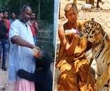VIDEO: इस अनोखे मंदिर में देवी दर्शन को आते हैं भालू, श्रद्धालु हाथों से खिलाते हैं प्रसाद