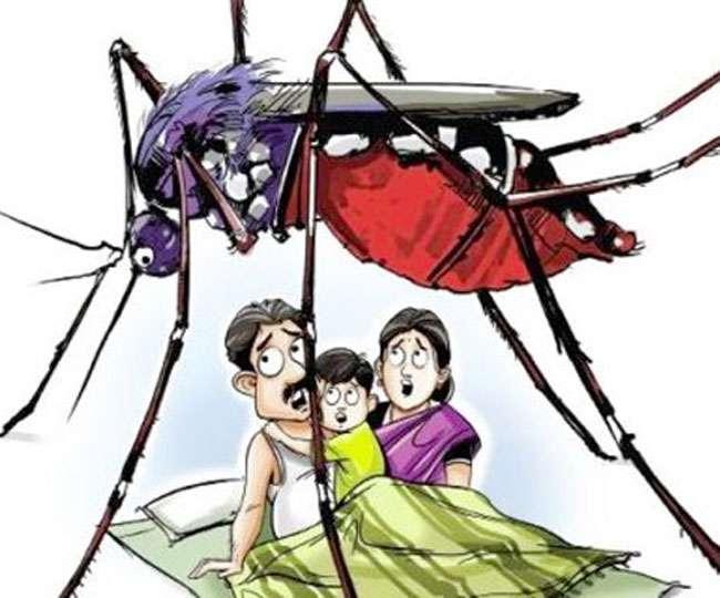 दून में डेंगू का दूसरा मामला आया सामने, हरिद्वार निवासी युवक में पुष्टि